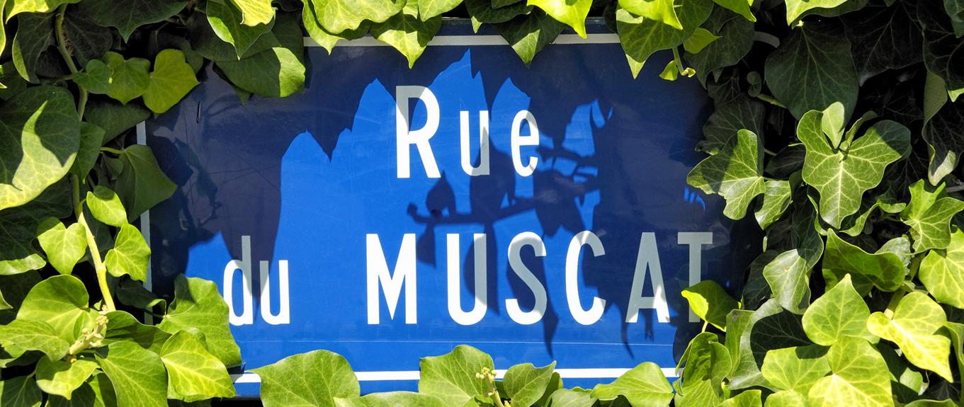 Paris fête les Vins d'Alsace