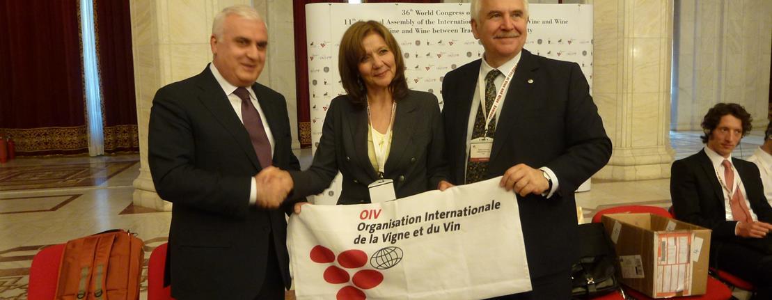 L'Azerbaidjan devient memebre de l'Organisation Internationale de la Vigne et du Vin-© OIV.INT