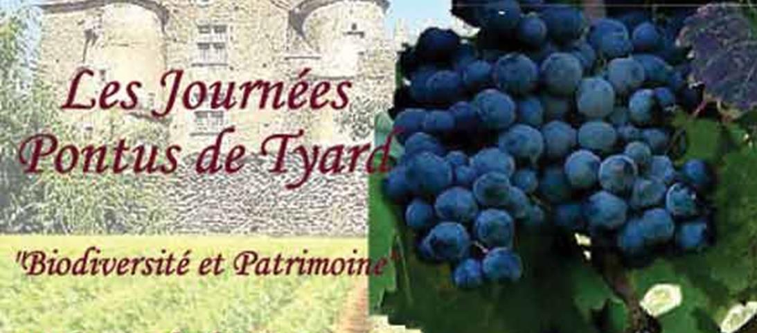 Les Journées Pontus de Tyard : vigne et biodiversité