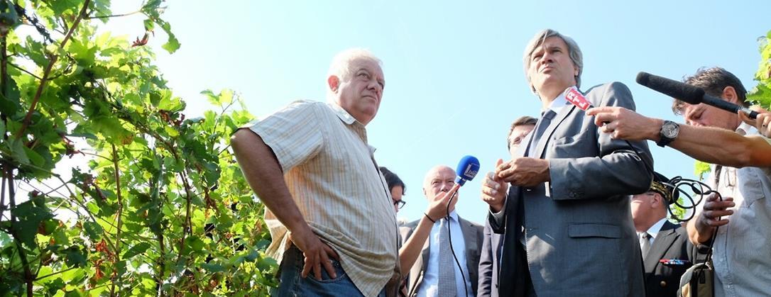 La visite du Ministre Stéphane Le Foll auprès des viticulteurs grèlés du Bordelais