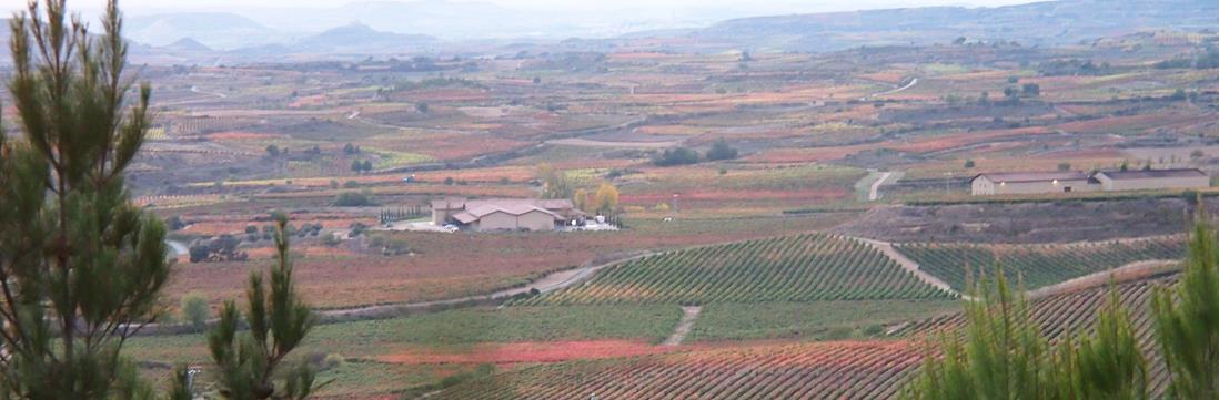 Vignobles espagnols de la Rioja-Copyright Nadine Couraud