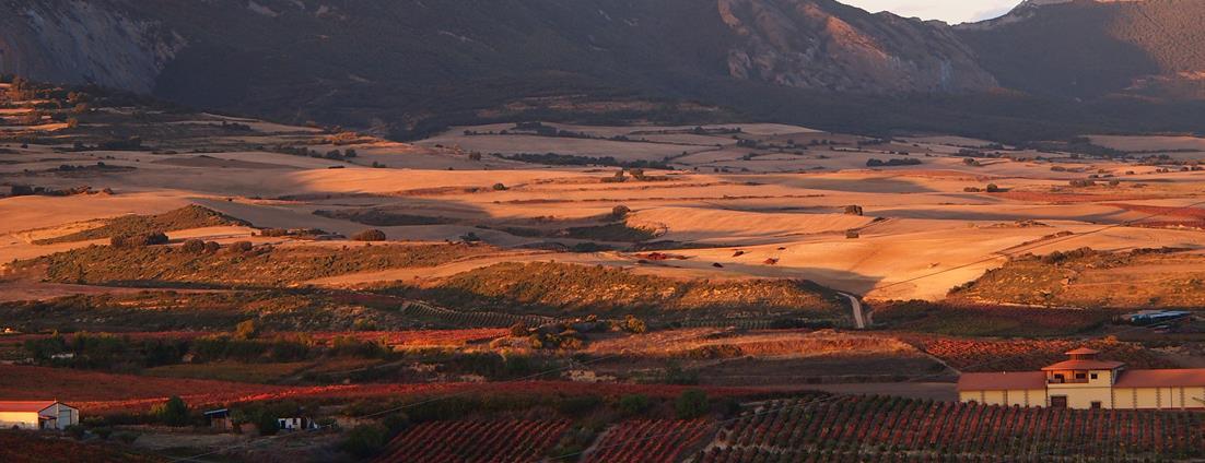 Vignobles de la Rioja