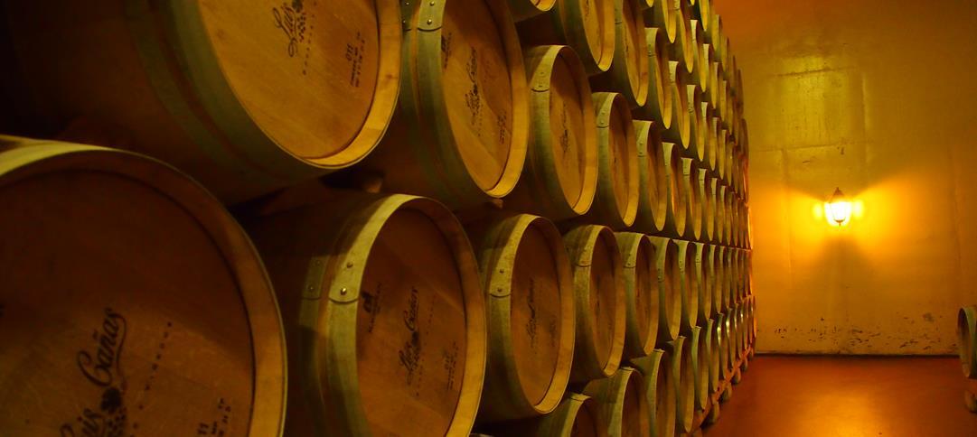 Le chai à barriques de la Bodega Luis Canas en Rioja