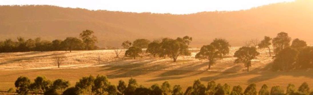 Le Domaine de Tournon en Australie