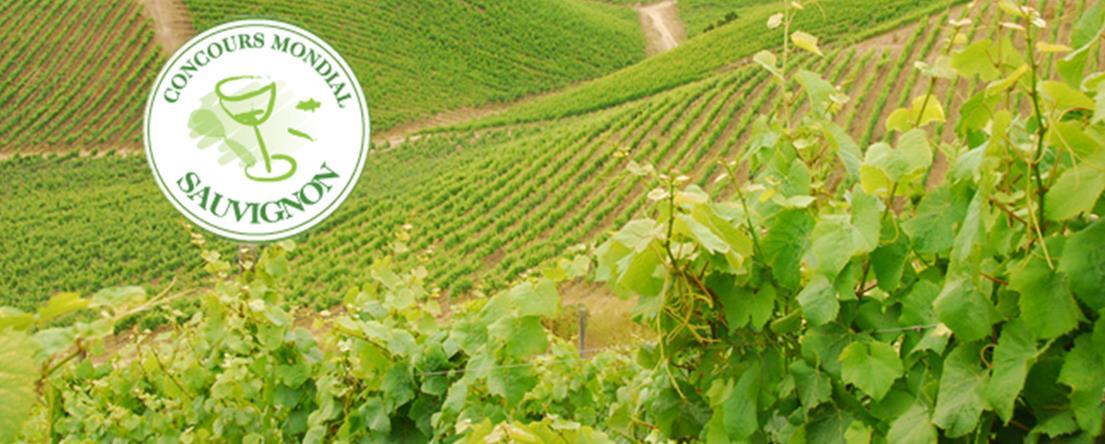 Concours du sauvignon 2014-Copyright Concours Mondial Sauvignon