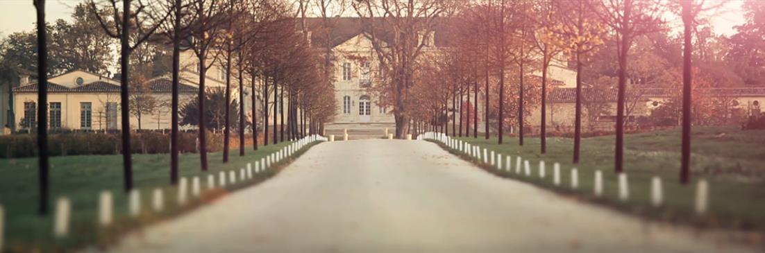 L'allée menant qu Château Soutard