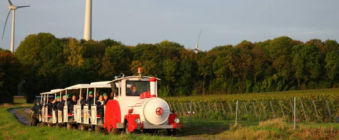 Le petit train des vendanges au Domaine du Chant d'Eole