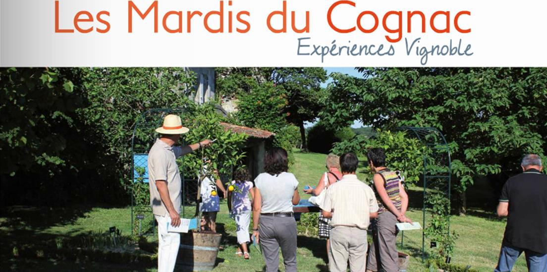 Pendant l'été, les Mardis du Cognac