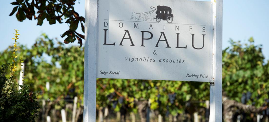 Advini au capital des Domaines Lapalu