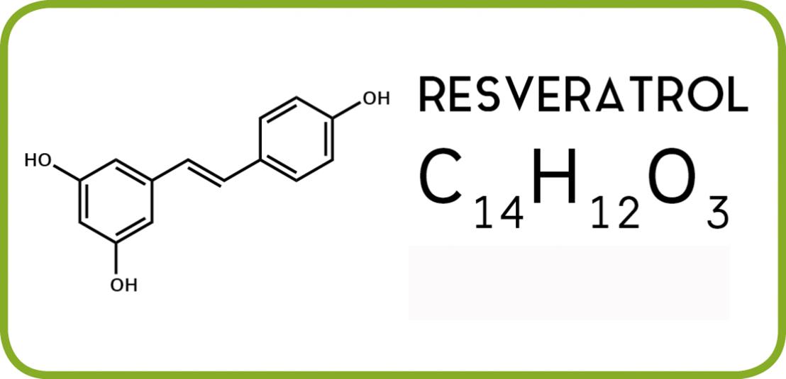 Le resveratrol aide à lutter contre la maladie d' Alzheimer