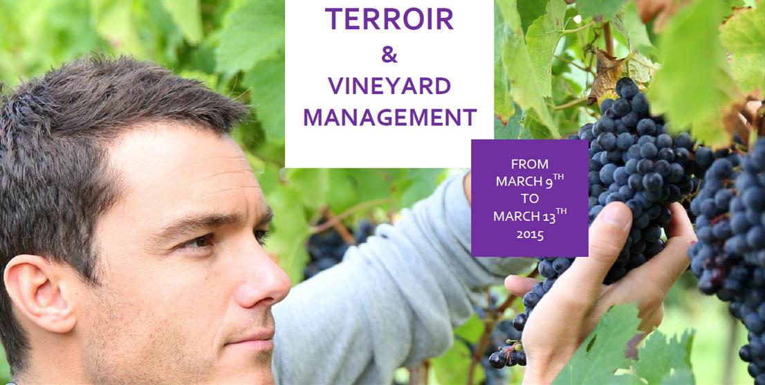 """Bordeaux Sciences Agro et sa formation """"Terroir & Vineyard Management"""""""