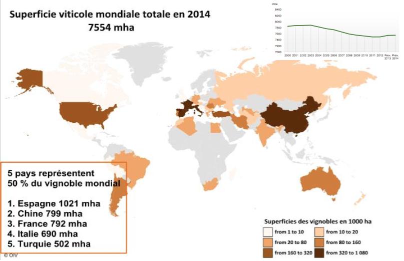 En 2014, la Chine devient le 2 ème vignoble mondial