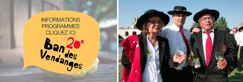 ban des Vendanges 2015 à Avignon