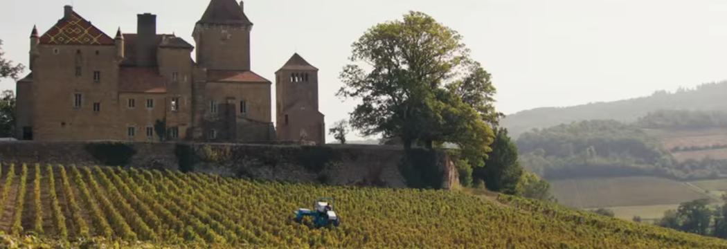 """""""Premiers crus"""" tourné en Bourgogne"""