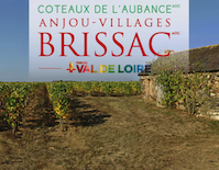 Anjou Villages-Brissac
