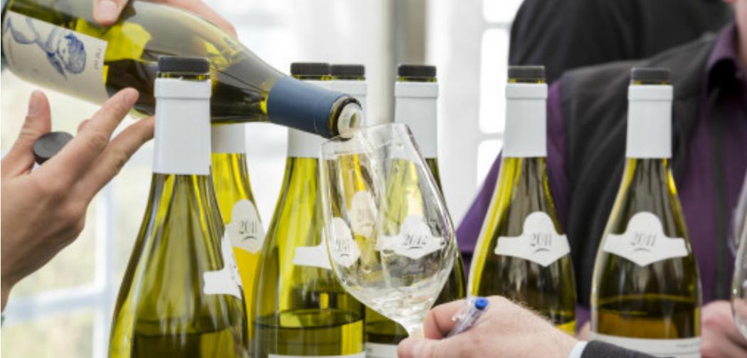 Dégustation vins de Bourgogne