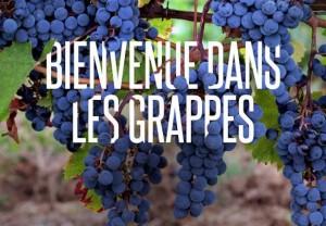 Les Grappes, place de marché des vins