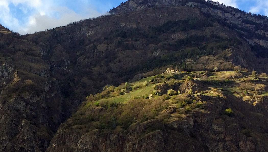 Un vignoble accroché à la montagne