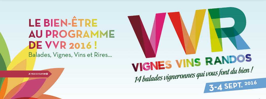 Vignes-vins-rando-Loire