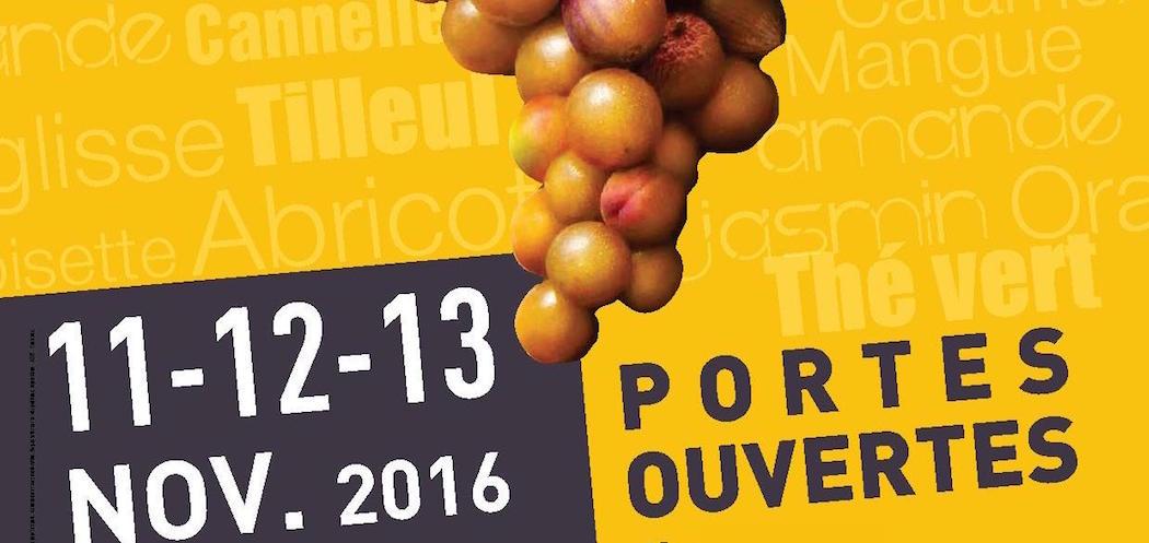 Les ¨Portes ouvertes de Sauternes et Barsac