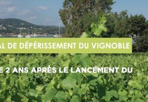 Plan National de Dépérissement du vignoble français