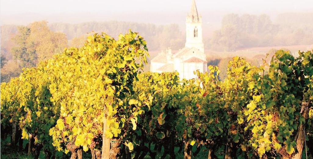 vignoble de Loupiac
